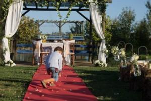 Quinta do Tambor - Casamento 1
