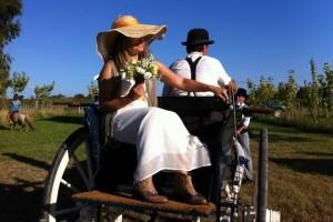 Quinta do Tambor - Casamento 5