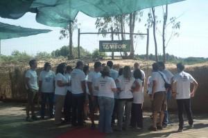 Quinta do Tambor - Team Building